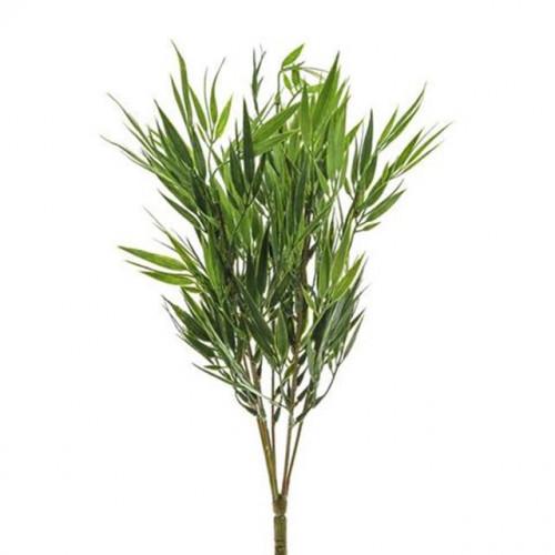 Bamboo Bush 46Cm