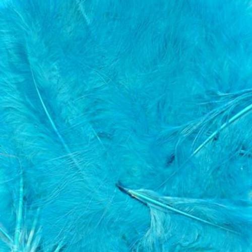8G Bag Turq Feathers