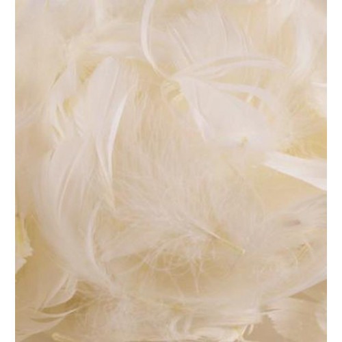 50G Bag Ivory Feathers