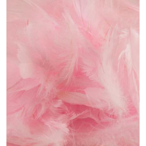 50G Bag Lt.Pink Feathers