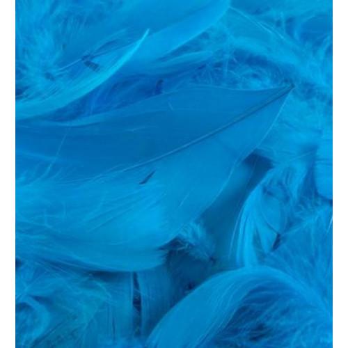 50G Bag Turq Feathers