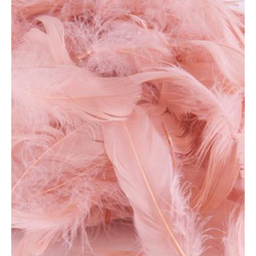 50G Bag R.Gold Feathers