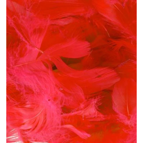50G Bag Red Feathers