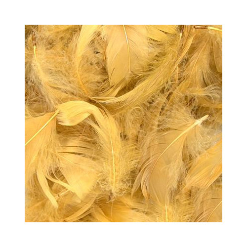 50G Bag Gold Feathers