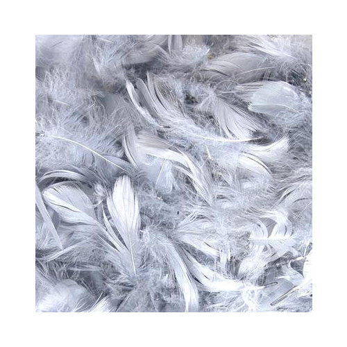 50G Bag Silver Feathers