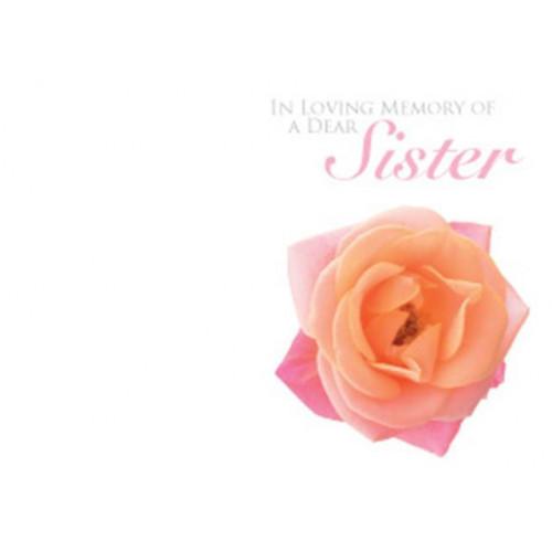 Ilm Of A Dear Sister