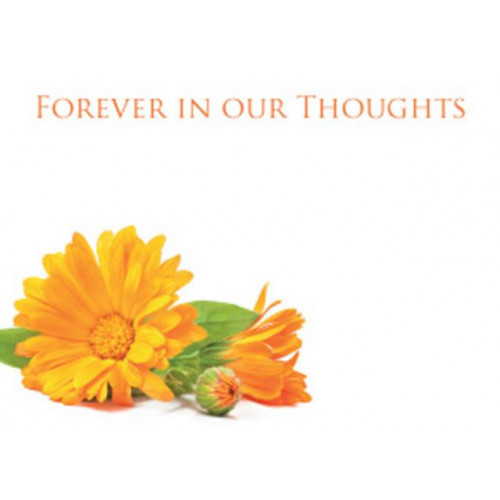 Large Cards Forever In Our Thoughts