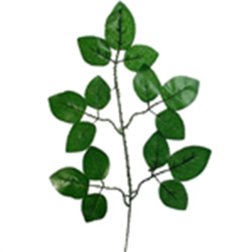 Green Rose Leaf Spray