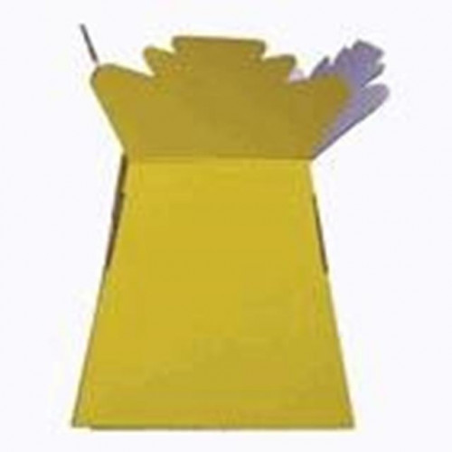 Bright Yellow Living Vase 30 Pieces