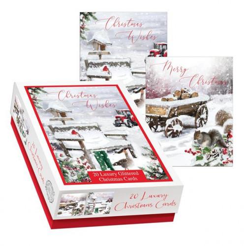 A Winter Farm Box Assotments