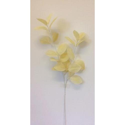 Single Foliage Cream