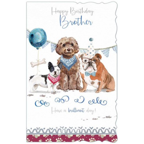 PK6 C125 CARDS BROTHER MALE CUTE NETT