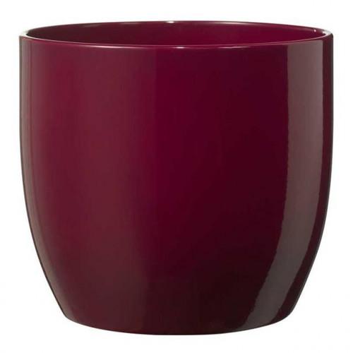 Basel Fashion Pot Shiny Cyclamen (12Cmx10Cm)